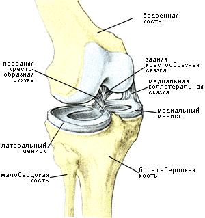 Где можно сделать артроскопическую операцию коленного сустава в г пятигорске показать физические упражнения в картинках для поясничных суставов